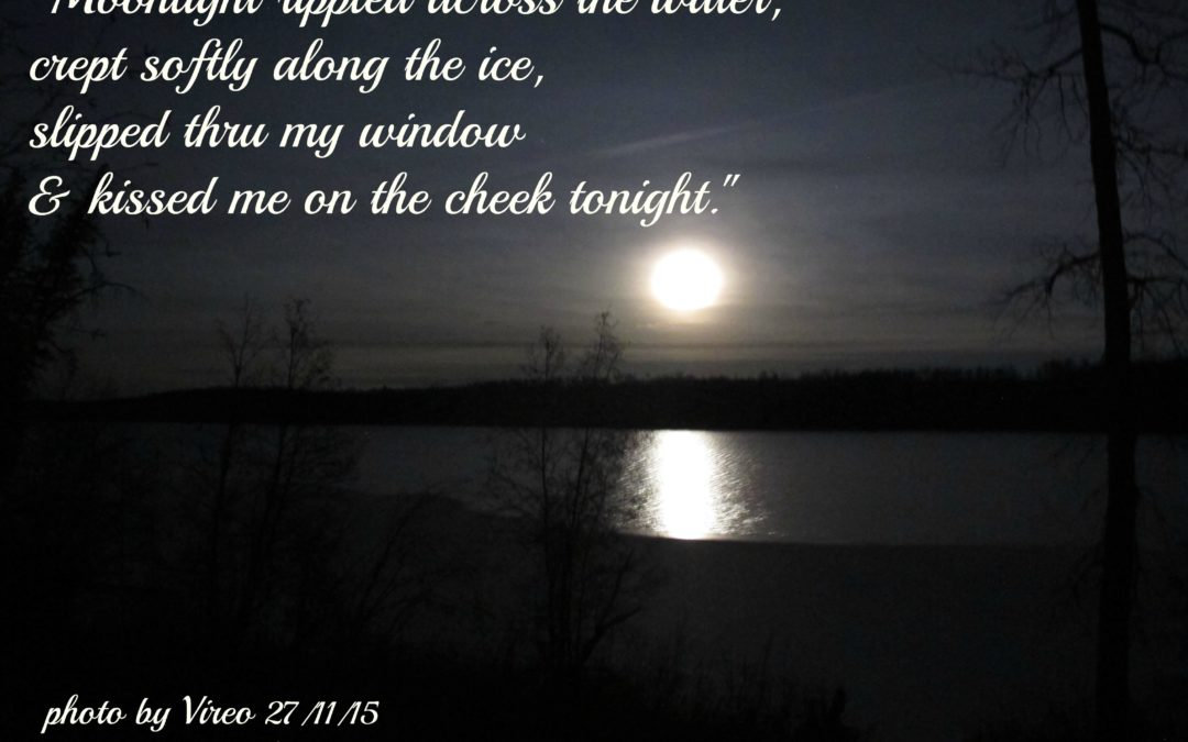 Moonlight Poetry